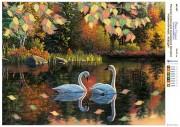 Рисунок на холсте для вышивки бисером Романтичные лебеди