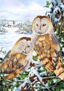 Рисунок на атласе для вышивки бисером Зимние совы