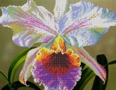 Рисунок на габардине для вышивки бисером Ирис Картины бисером S-046