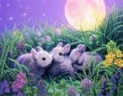 Рисунок на габардине для вышивки бисером Крольчата