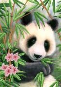 Рисунок на атласе для вышивки бисером Панда