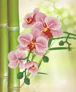 Рисунок на ткани для вышивки бисером Тропические цветы