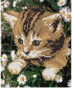 Рисунок на ткани для вышивки бисером Мурчик в ромашках