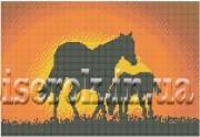 Рисунок на ткани для вышивки бисером Лошади на закате