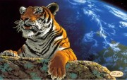 Рисунок на ткани для вышивки бисером Амурский тигр. Спасём плвнету
