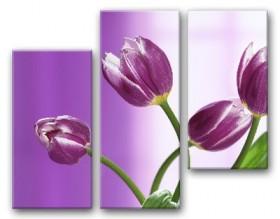 Рисунок на ткани для вышивки бисером Сиреневый этюд, , 220.00грн., СК-001, Tela Artis (Тэла Артис), Картины из нескольких частей