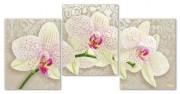 Рисунок на ткани для вышивки бисером Крем брюлле