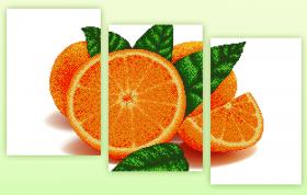 Рисунок на ткани для вышивки бисером Апельсин (полиптих из трёх частей), , 228.00грн., АРЗ-009, А-строчка, Картины из нескольких частей
