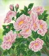 Рисунок на ткани для вышивки бисером Дикая роза