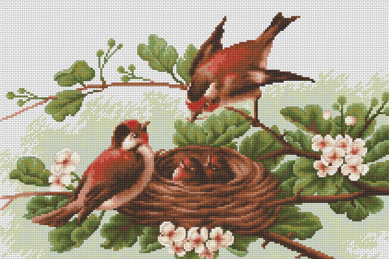 Схема вышивки птички в гнезде