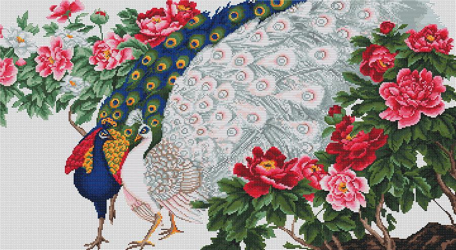 Схема вышивки крестом павлины в цветах