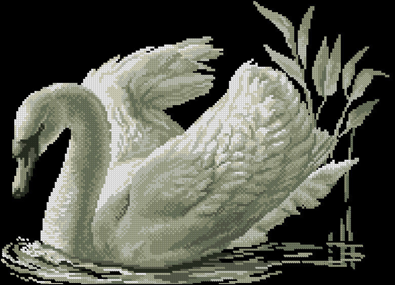 Черный лебедь вышивка схемы
