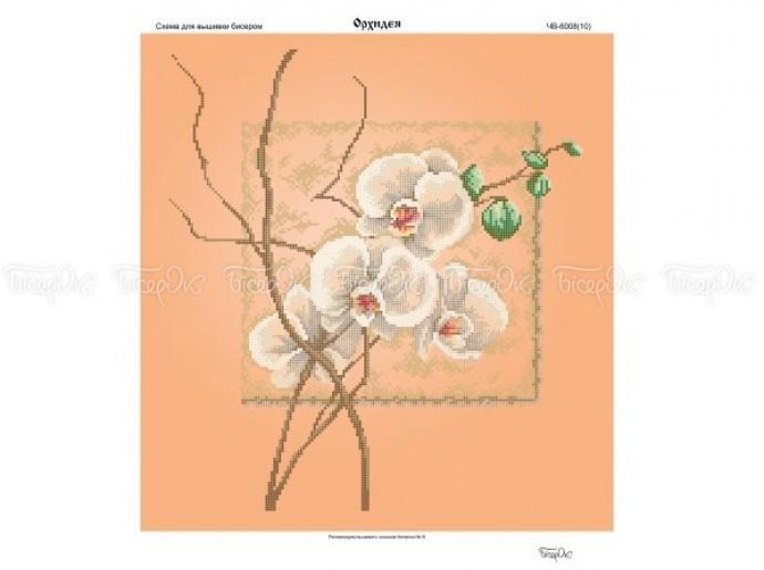 Белая орхидея-схема и вышивка