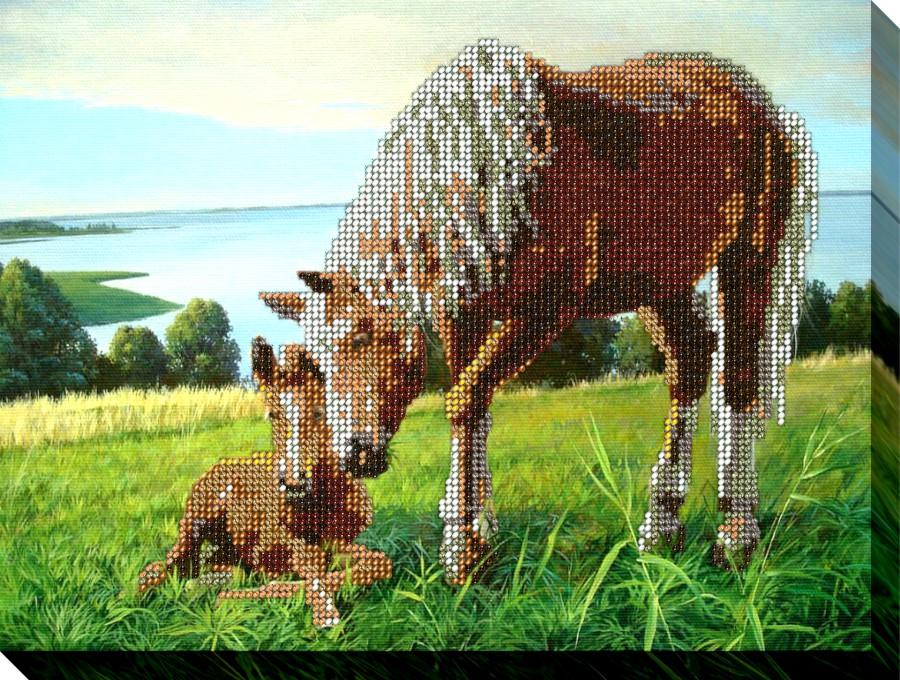 Набор для вышивания «Табун лошадей» 1064   Животный мир │ Купить ...   680x900
