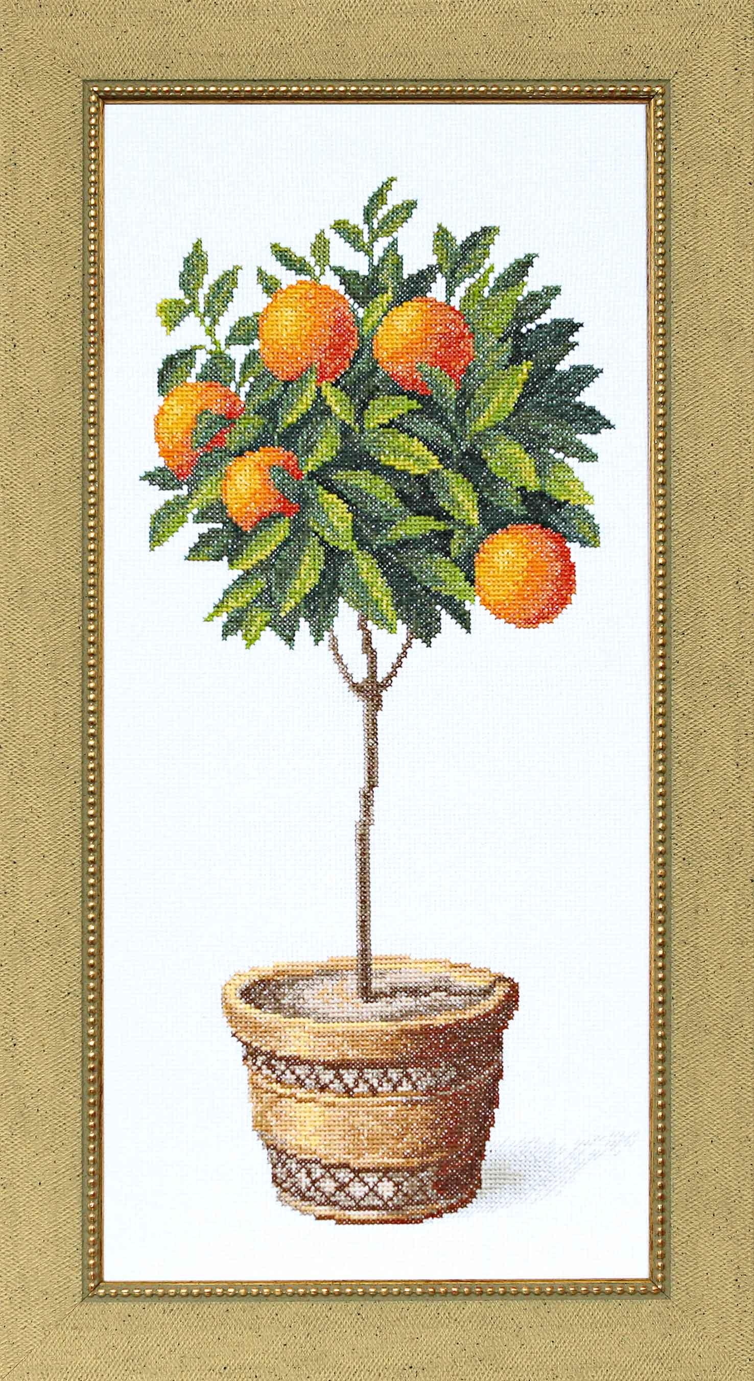 Схема вышивка апельсиновое дерево