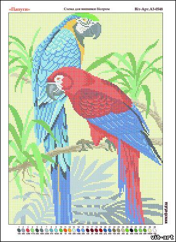Бесплатные схемы для вышивки попугаи