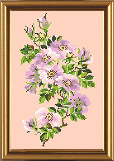 Рисунок цветок шиповника
