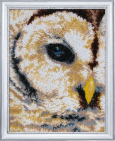 Набор для вышивки бисером Взгляд совы