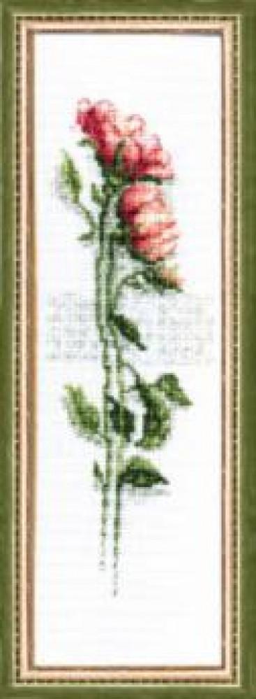 Купить набор для вышивки крестом цветы : цена, продажа - выш.