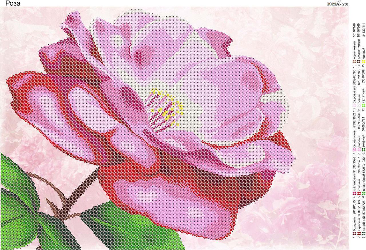 схема кот с розой