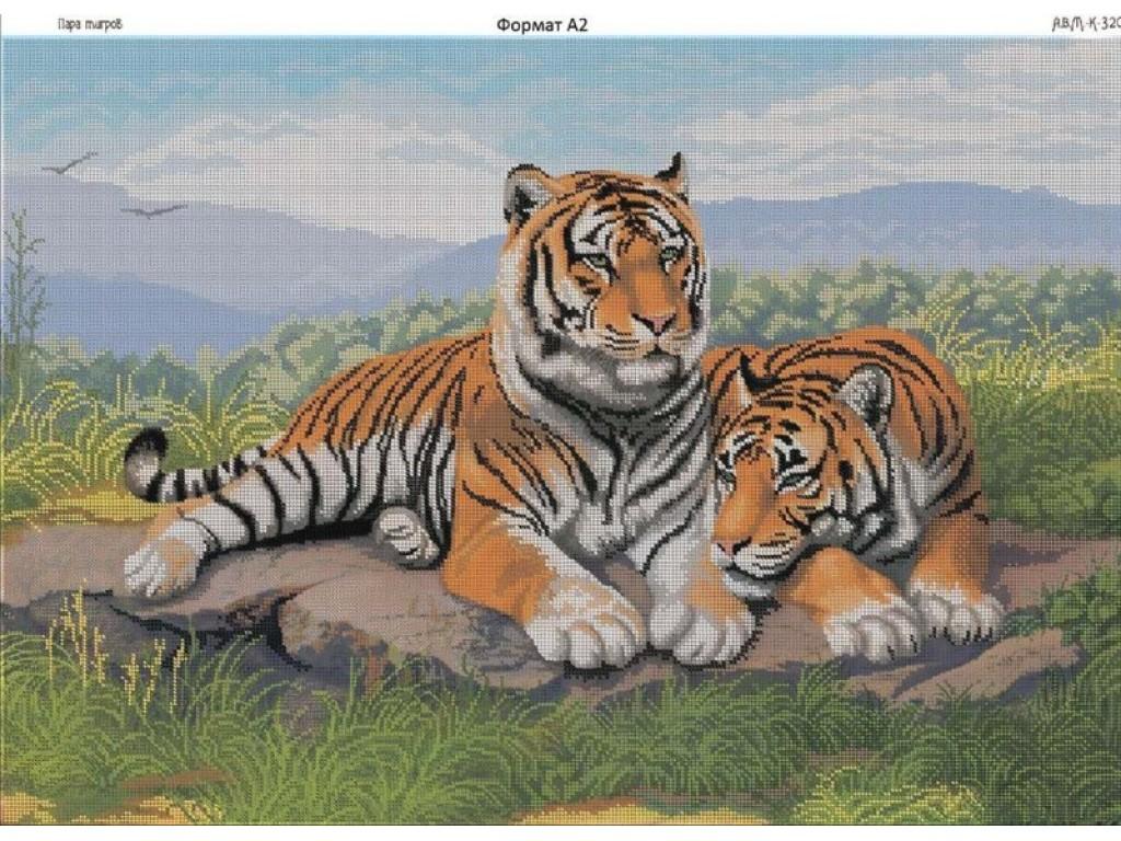 рисовать тигра схема
