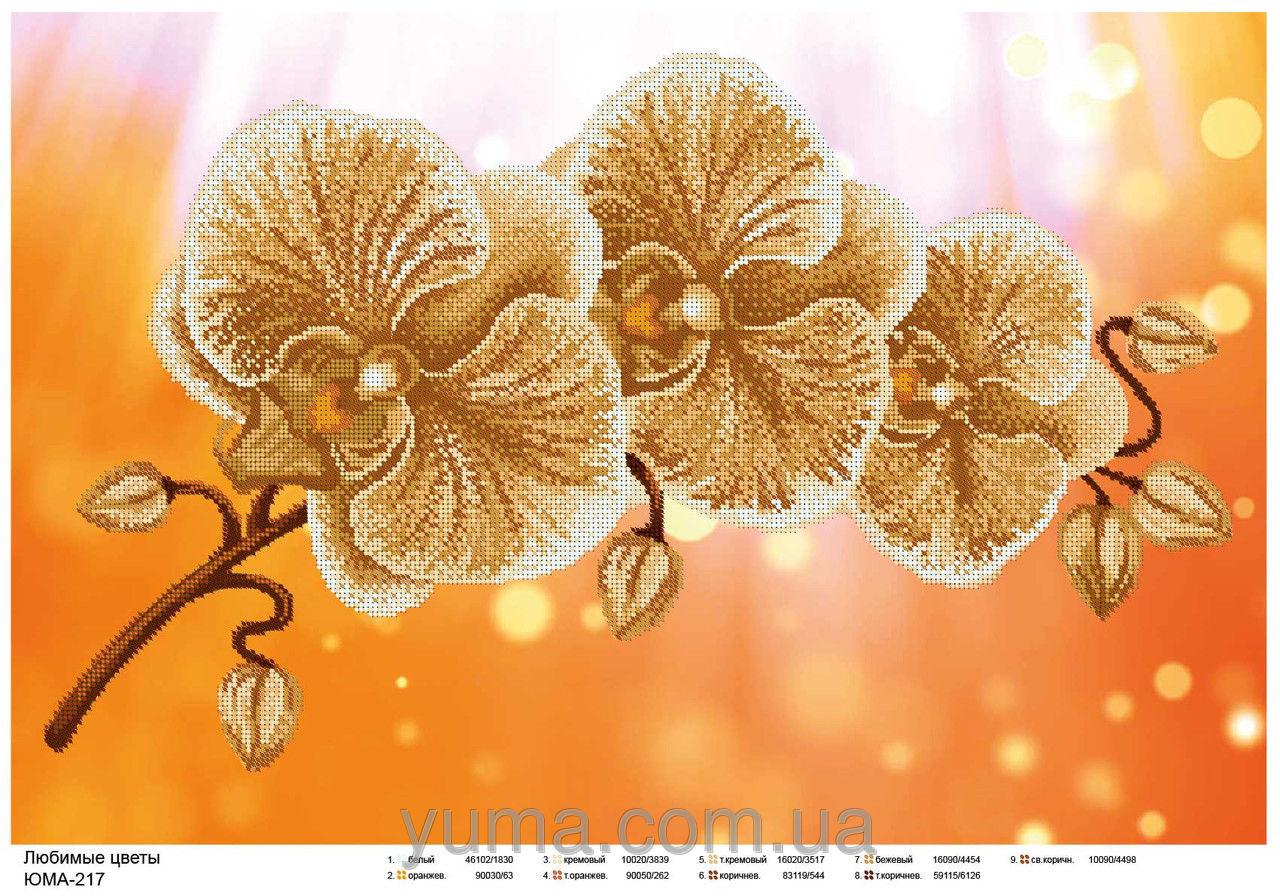 орхидея. схема вышивки