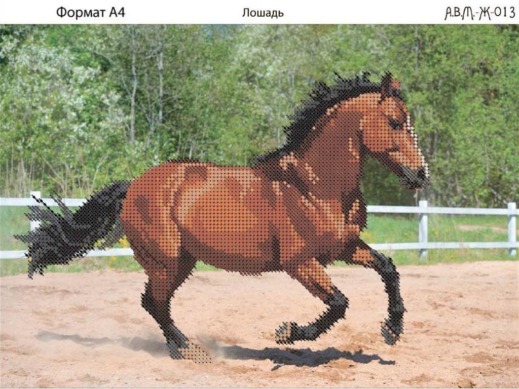 схема лошадей для вышивки